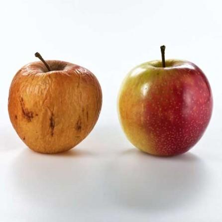 Health Eating - Skin Health Solutions